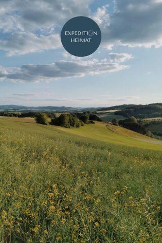 Ausflugsziele für deine Tagestour im Sauerland